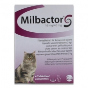 Milbactor Big Cats - 4 Tablets