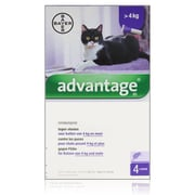 Advantage 80 | Katze 4-8kg | 4 pipetten