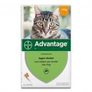 Advantage 40 | Katze bis 4 kg | 4 pipetten